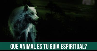 Que Animal es tu guía espiritual?
