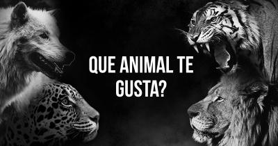 Que Animal te gusta?