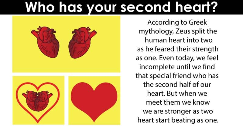why are calves called second heart
