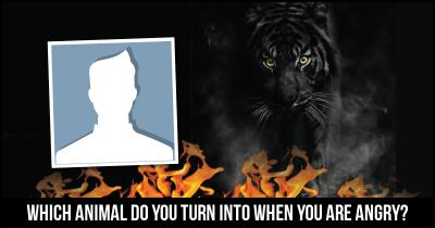 Which Animal do you turn into when you are Angry?