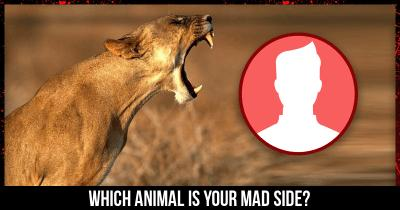 Which Animal is your MAD side?