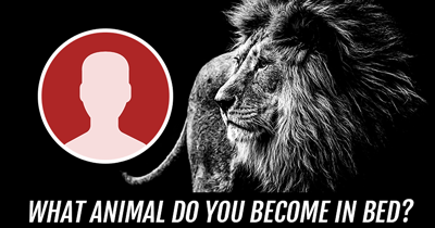 What Animal do you become in Bed?