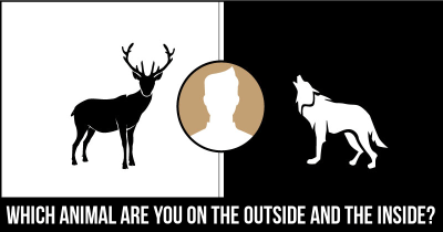 Which Animal are you on the Outside and the Inside?