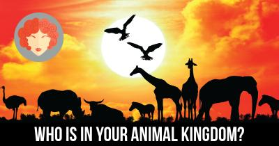 Who is in your Animal Kingdom?