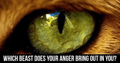 Which Beast does your anger bring out in you?