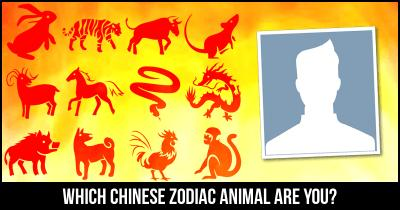 Which Chinese Zodiac Animal are you?