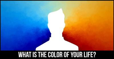 What is the Color of your Life?