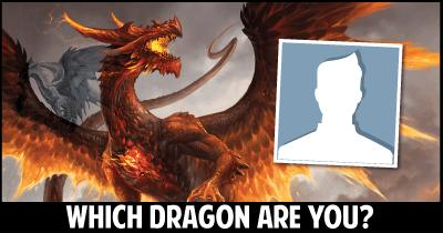 Which Dragon are you?