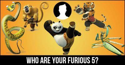 Who are your furious 5?