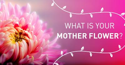 What is your Mother Flower?