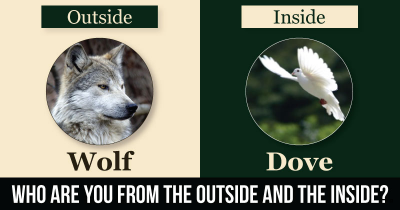 Who are you from the Outside and the Inside?
