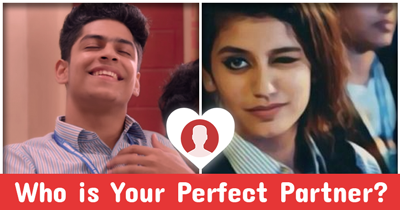 Who is Your Perfect Partner?