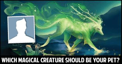 Which Magical Creature should be your Pet?