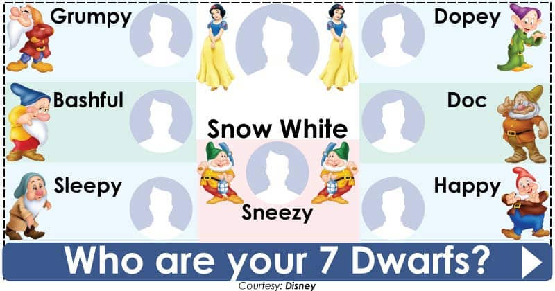 Who are your 7 Dwarfs?