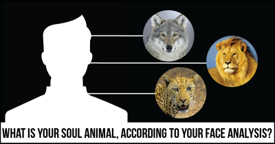 What is your Soul Animal, according to your Face Analysis?