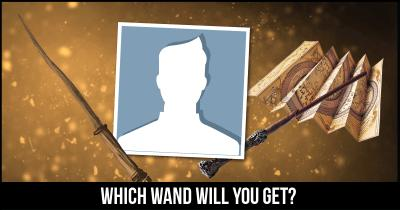 Which Wand will you get?