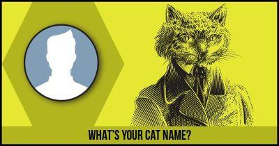 What's your Cat Name?