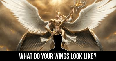 What do your Wings look like?