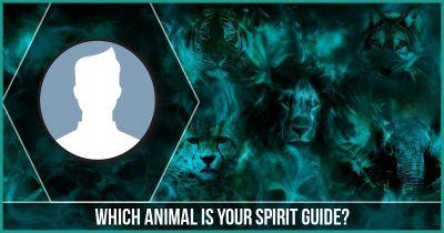 Which Animal is your Spirit Guide?