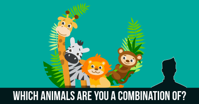 Which Animals are you a combination of?