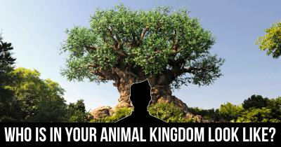 Who is in your Animal Kingdom look like?