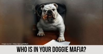 Who is in your Doggie Mafia?