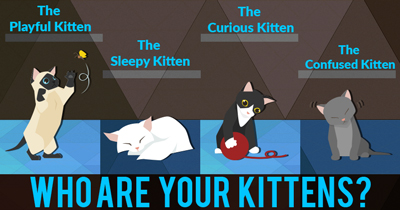 Who are your kittens?