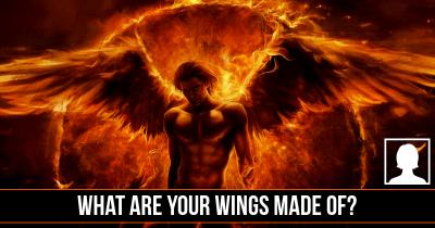 What are your Wings made of?