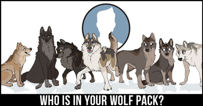Who is in your Wolf Pack?