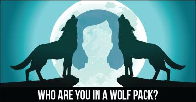 Who are you in a Wolf Pack?