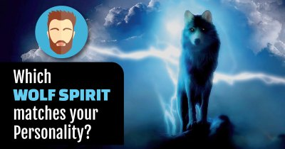 Which Wolf Spirit matches your Personality?