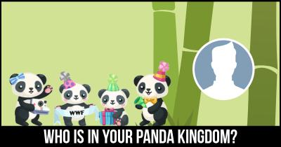 Who is in your Panda Kingdom?