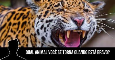 Qual animal você se torna quando está bravo?