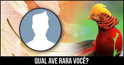 Qual ave rara você?