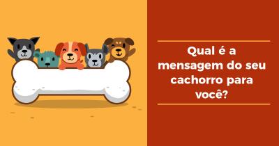 Qual é a mensagem do seu cachorro para você?